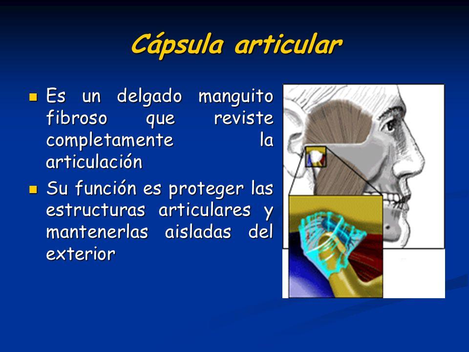 Cápsula articular Es un delgado manguito fibroso que reviste completamente la articulación.