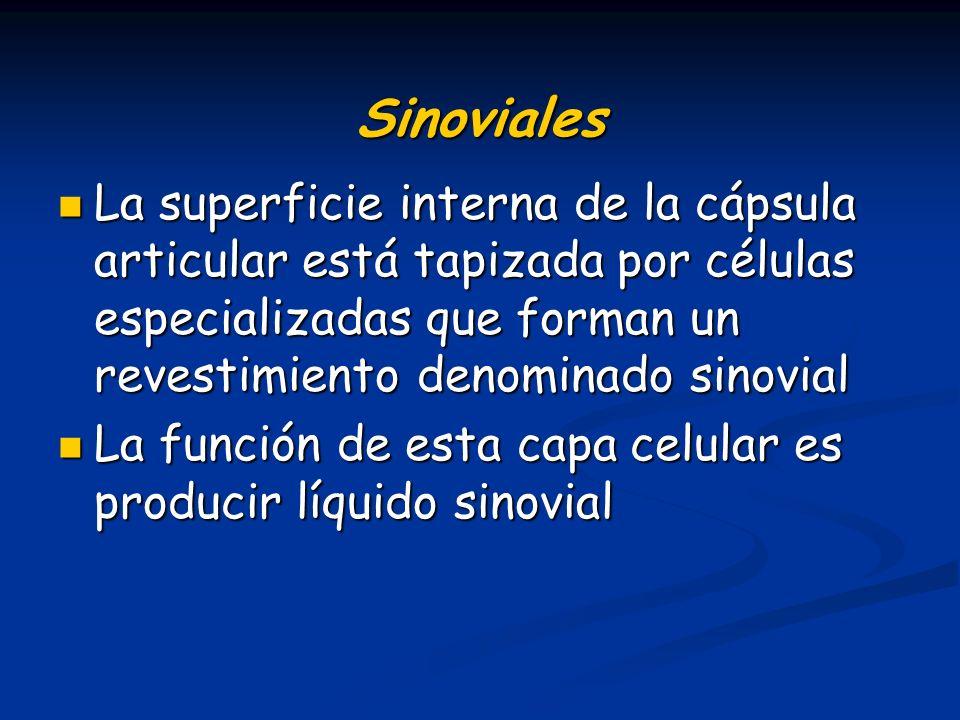 Sinoviales La superficie interna de la cápsula articular está tapizada por células especializadas que forman un revestimiento denominado sinovial.