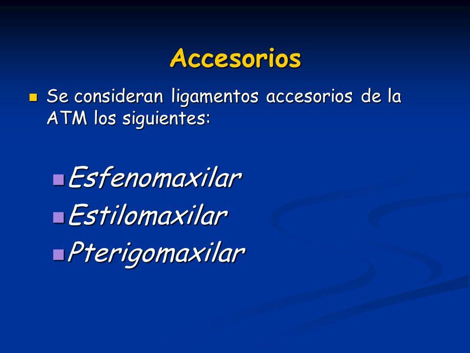 Accesorios Esfenomaxilar Estilomaxilar Pterigomaxilar