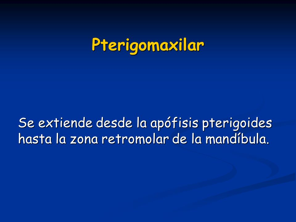 Pterigomaxilar Se extiende desde la apófisis pterigoides