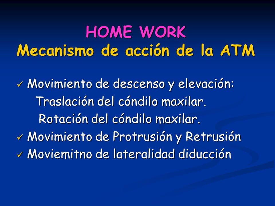 HOME WORK Mecanismo de acción de la ATM