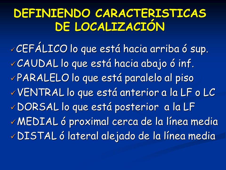 DEFINIENDO CARACTERISTICAS DE LOCALIZACIÓN