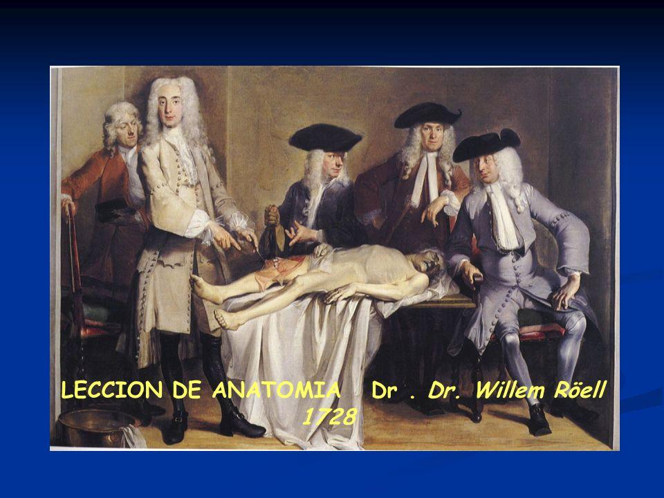 LECCION DE ANATOMIA Dr . Dr. Willem Röell