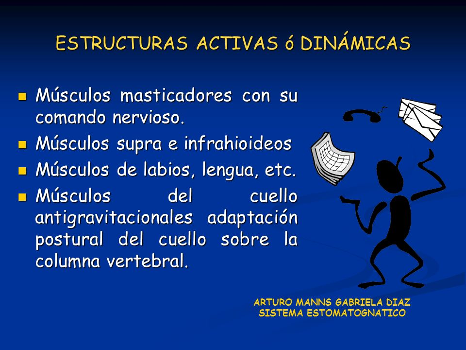 ESTRUCTURAS ACTIVAS ó DINÁMICAS