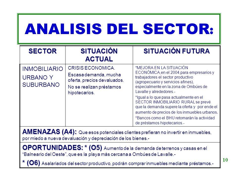 ANALISIS DEL SECTOR: SECTOR SITUACIÓN ACTUAL SITUACIÓN FUTURA