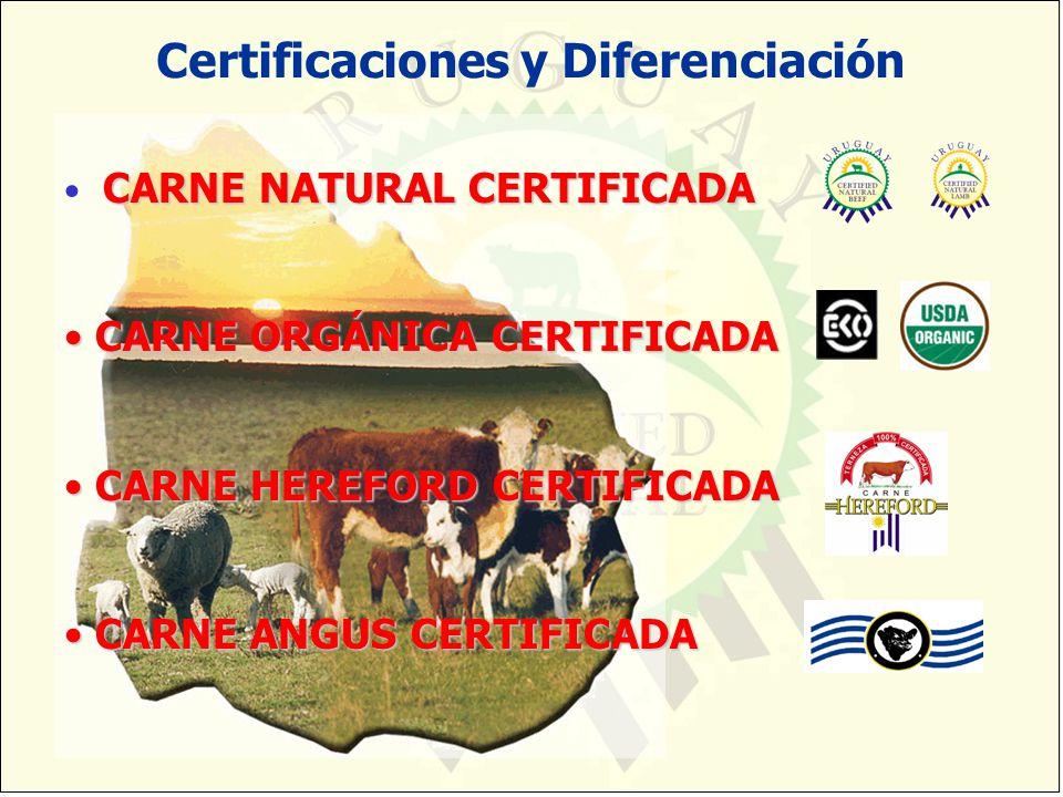 Certificaciones y Diferenciación