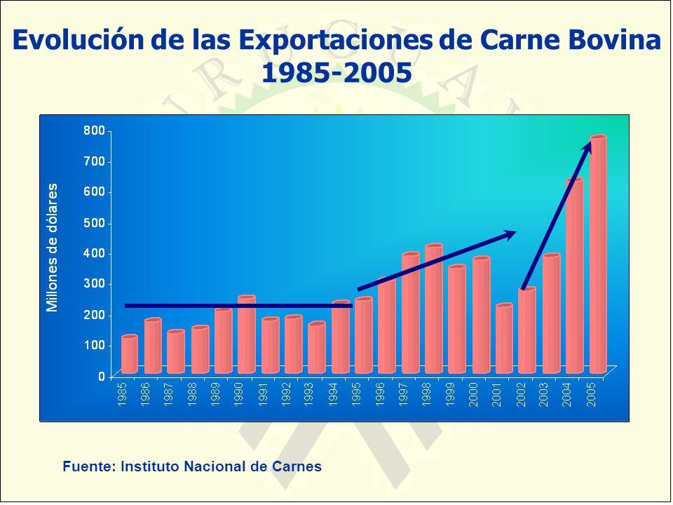 Evolución de las Exportaciones de Carne Bovina