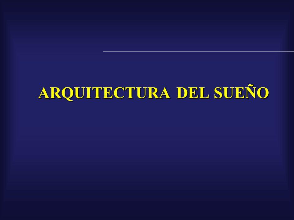 ARQUITECTURA DEL SUEÑO