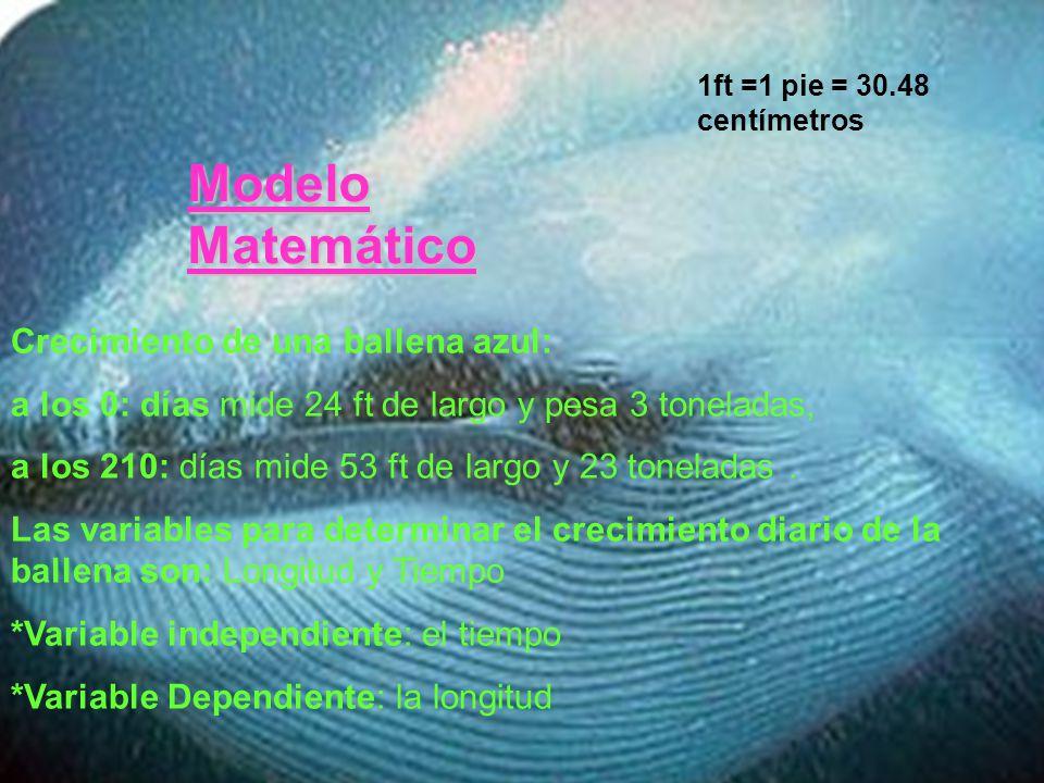 Modelo Matemático Crecimiento de una ballena azul: