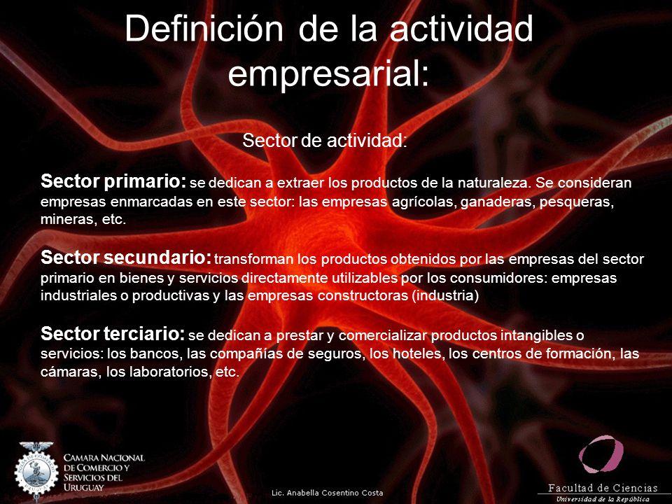 Definición de la actividad empresarial: