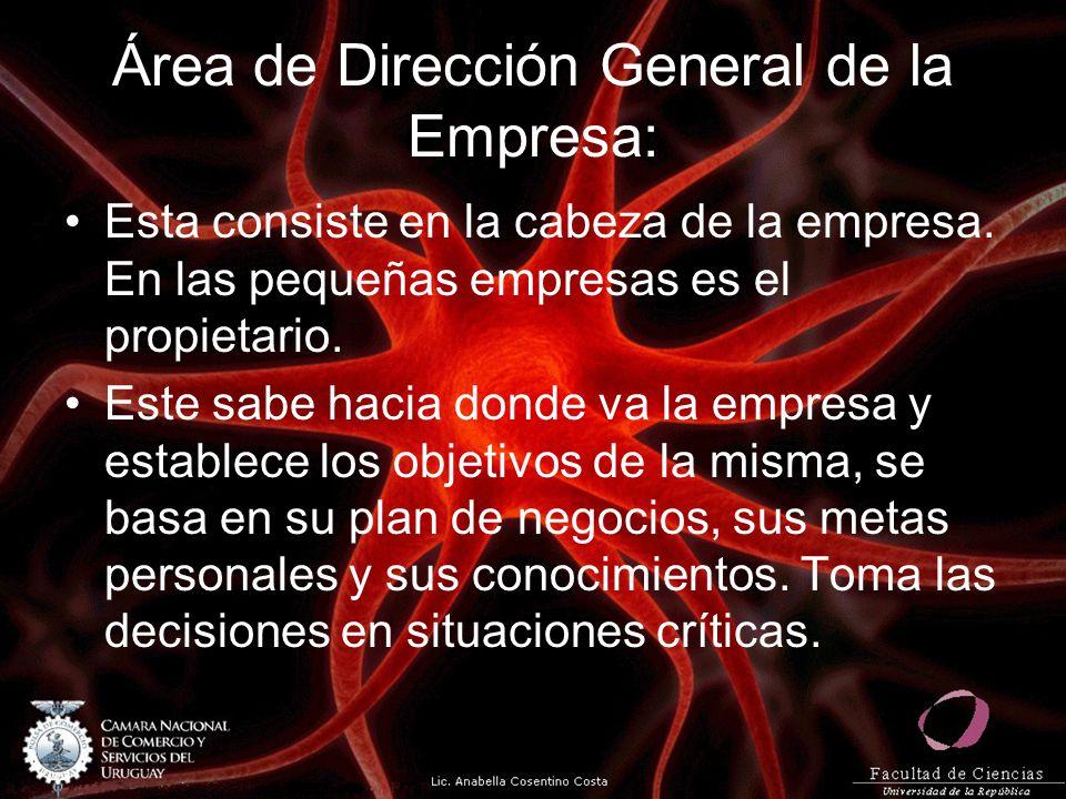 Área de Dirección General de la Empresa: