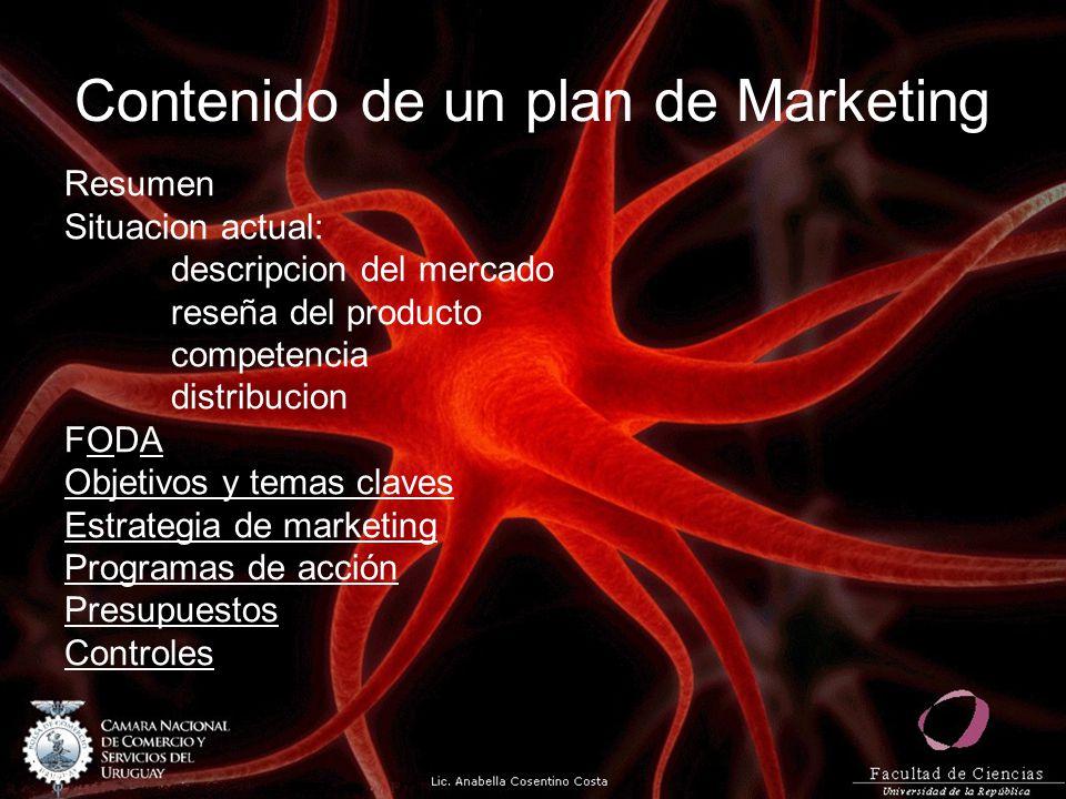 Contenido de un plan de Marketing