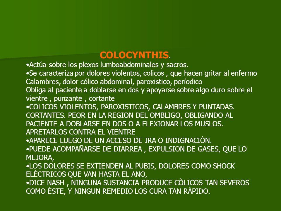 COLOCYNTHIS. Actúa sobre los plexos lumboabdominales y sacros.