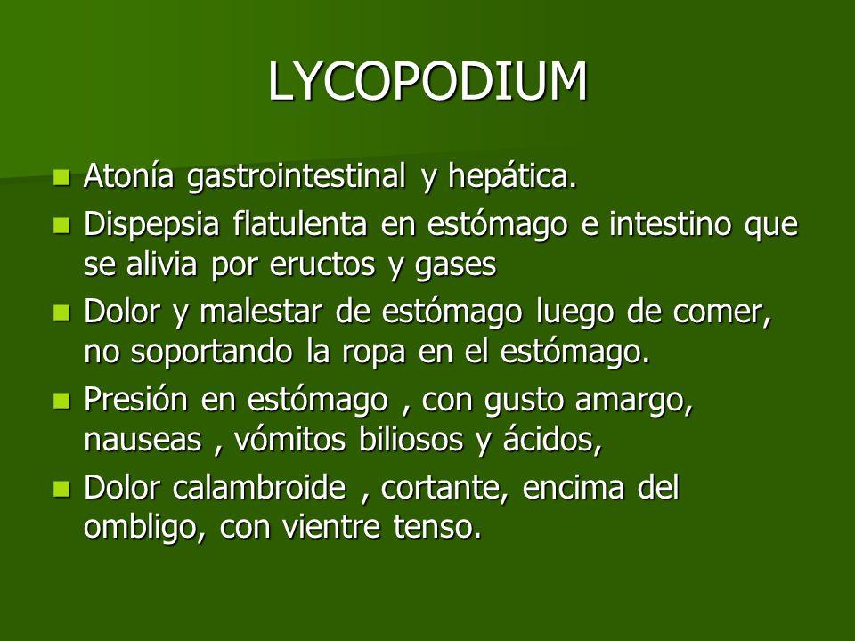 LYCOPODIUM Atonía gastrointestinal y hepática.