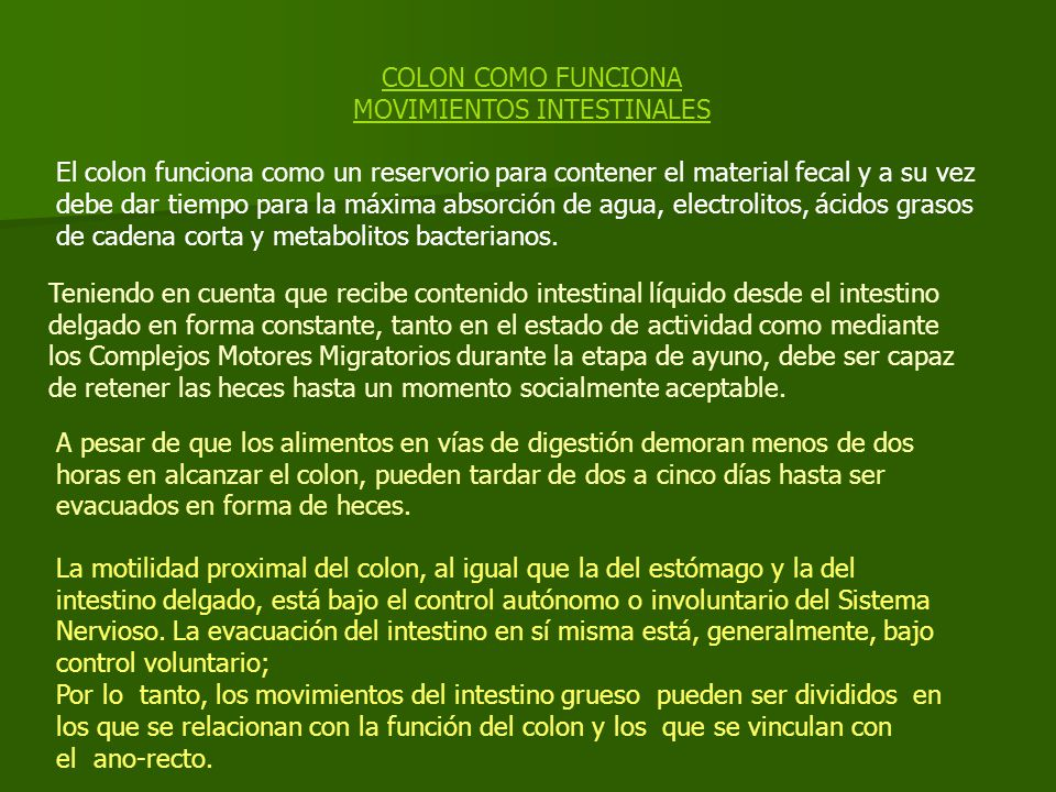 COLON COMO FUNCIONA MOVIMIENTOS INTESTINALES