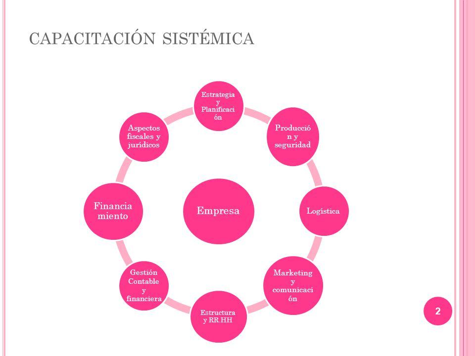 capacitación sistémica