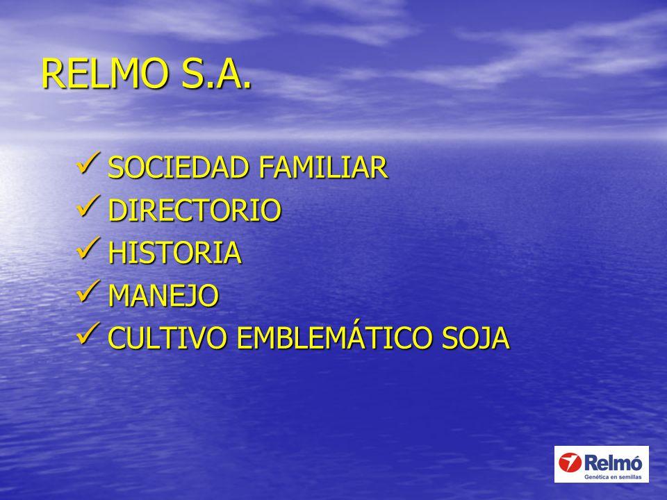 RELMO S.A. SOCIEDAD FAMILIAR DIRECTORIO HISTORIA MANEJO