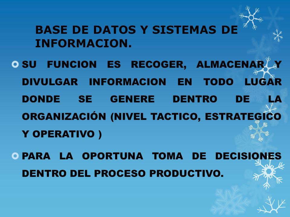 BASE DE DATOS Y SISTEMAS DE INFORMACION.