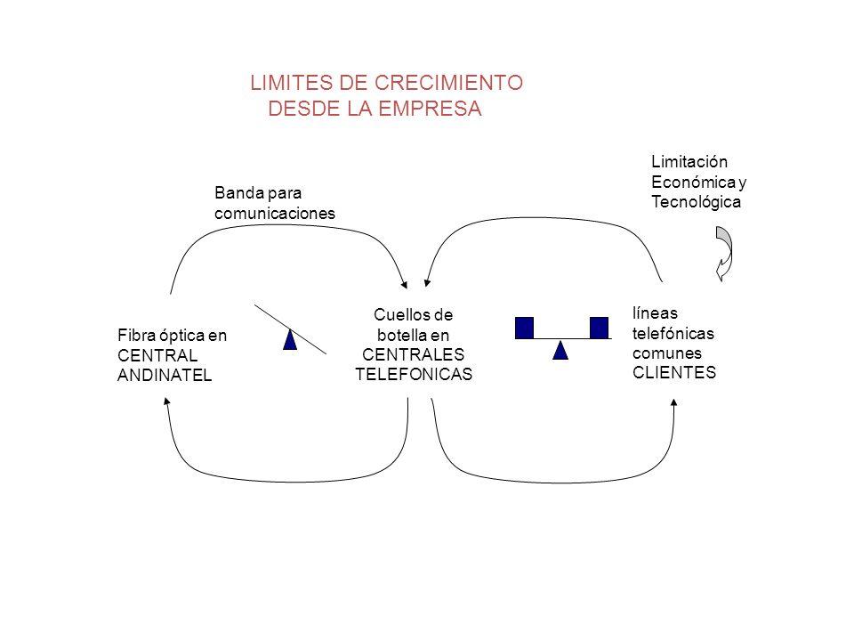 LIMITES DE CRECIMIENTO DESDE LA EMPRESA