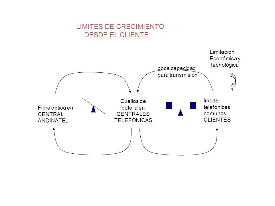 LIMITES DE CRECIMIENTO DESDE EL CLIENTE