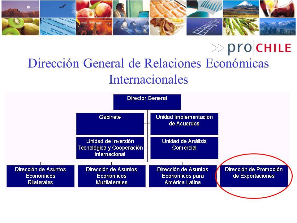 Dirección General de Relaciones Económicas Internacionales