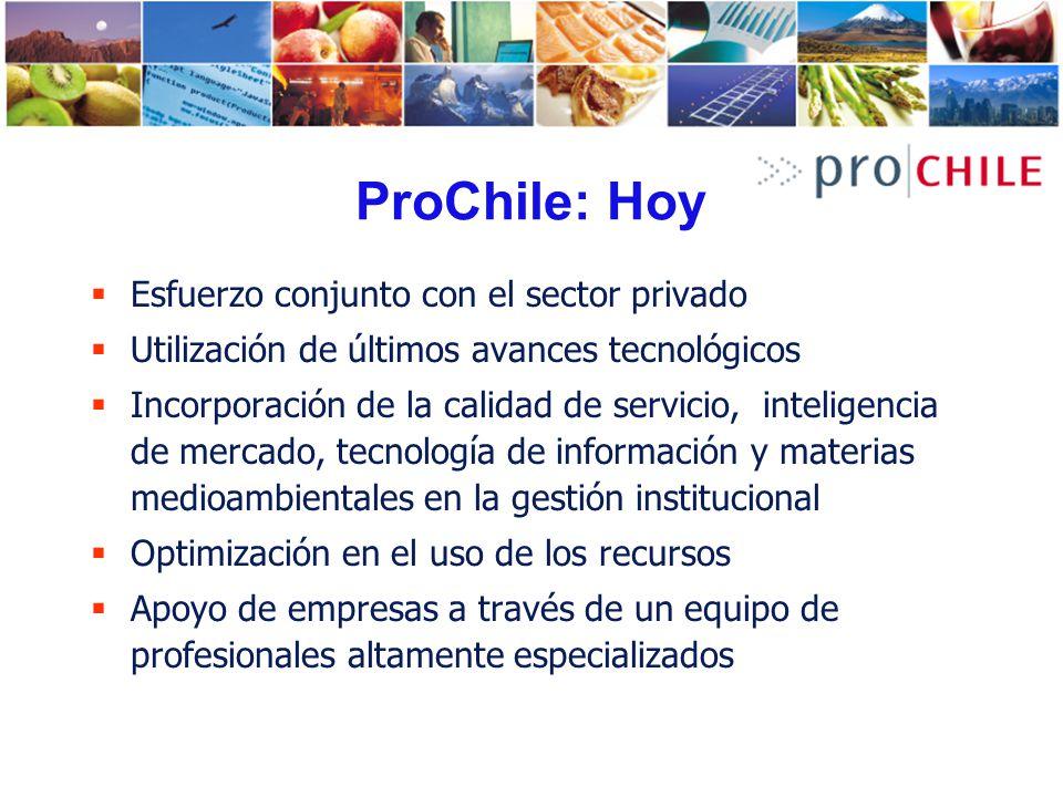ProChile: Hoy Esfuerzo conjunto con el sector privado