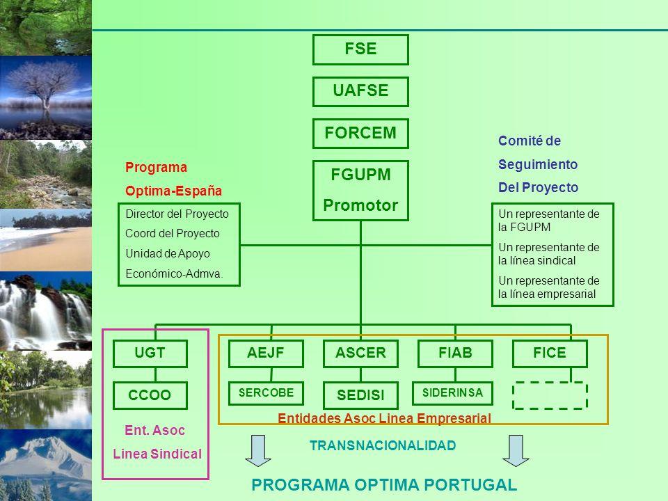 FSE UAFSE FORCEM FGUPM Promotor