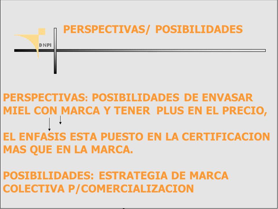 PERSPECTIVAS/ POSIBILIDADES