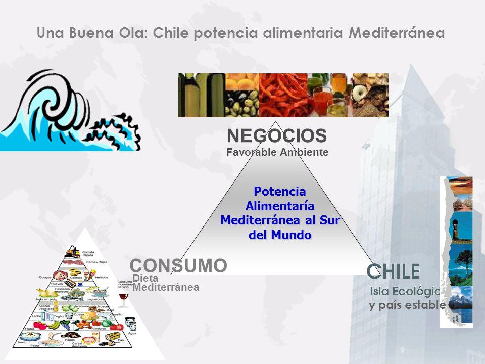 Una Buena Ola: Chile potencia alimentaria Mediterránea