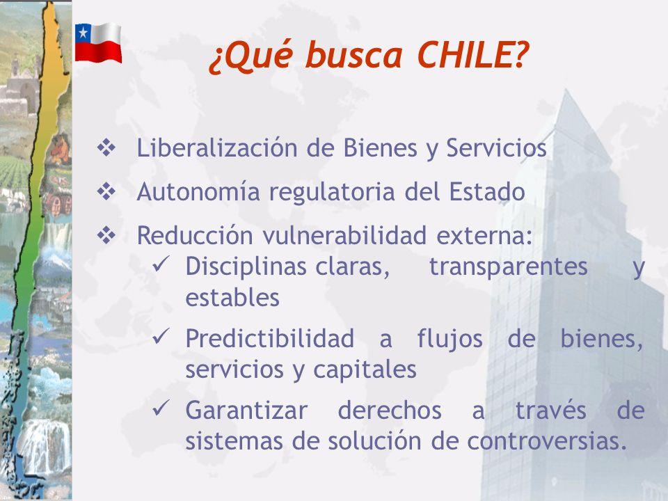 ¿Qué busca CHILE Liberalización de Bienes y Servicios