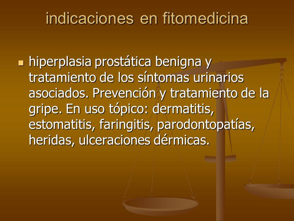 indicaciones en fitomedicina