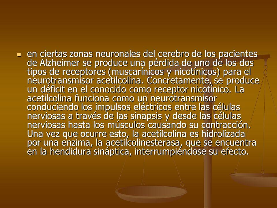 en ciertas zonas neuronales del cerebro de los pacientes de Alzheimer se produce una pérdida de uno de los dos tipos de receptores (muscarínicos y nicotínicos) para el neurotransmisor acetilcolina.