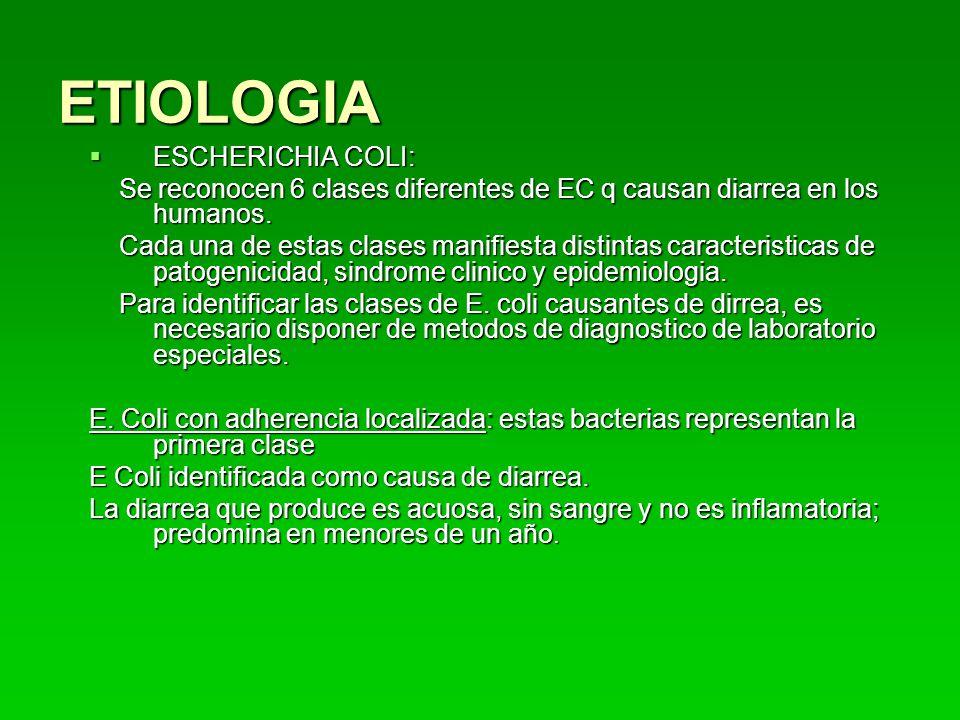 ETIOLOGIA ESCHERICHIA COLI:
