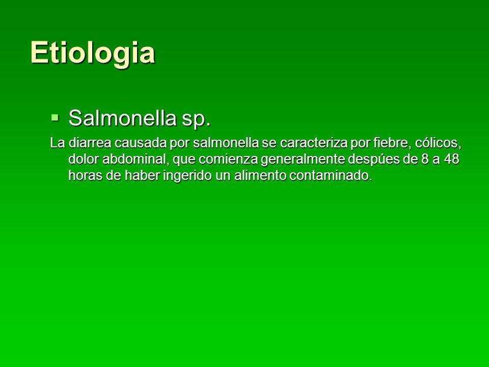 Etiologia Salmonella sp.