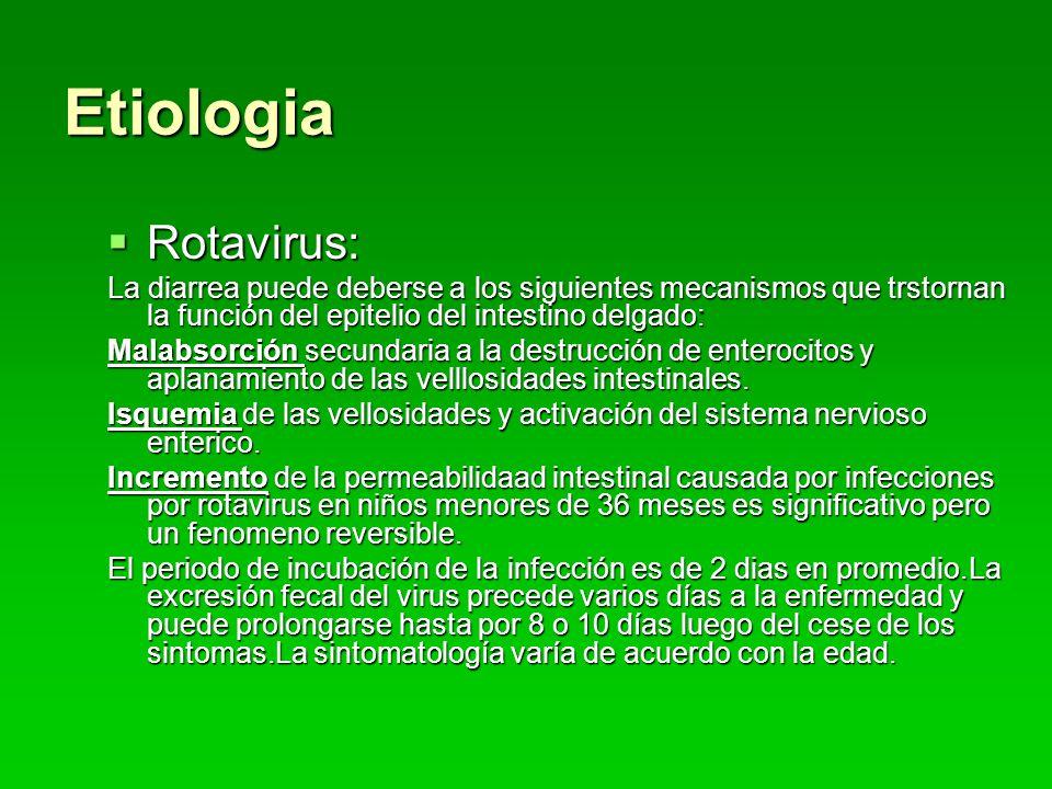 Etiologia Rotavirus: La diarrea puede deberse a los siguientes mecanismos que trstornan la función del epitelio del intestino delgado: