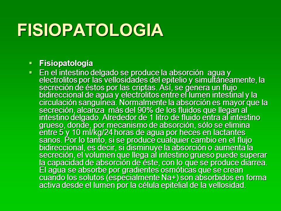 FISIOPATOLOGIA Fisiopatología