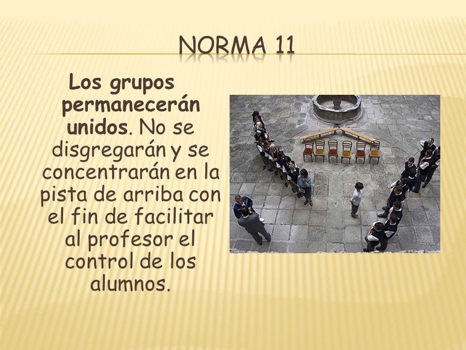 Norma 11