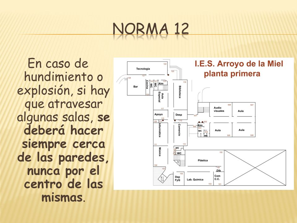 Norma 12
