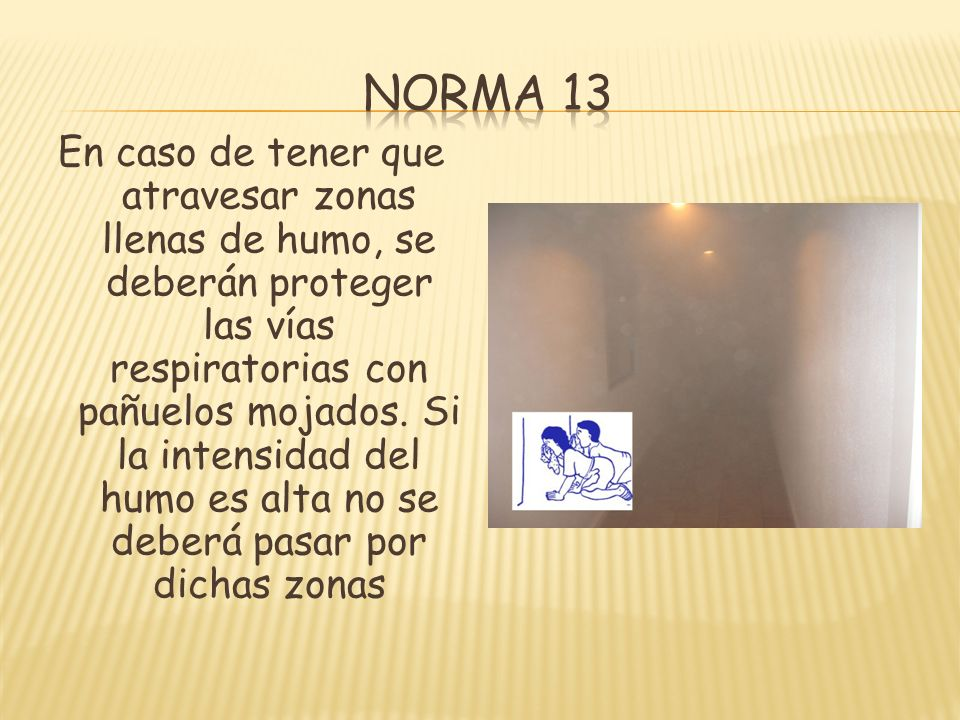 Norma 13