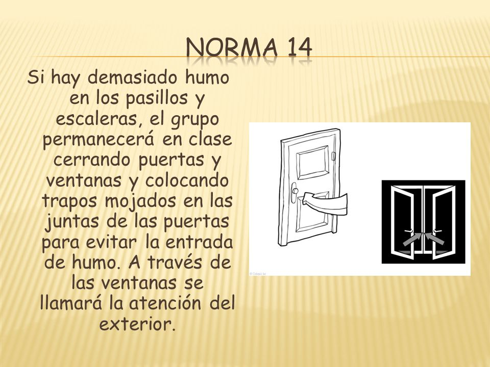 Norma 14