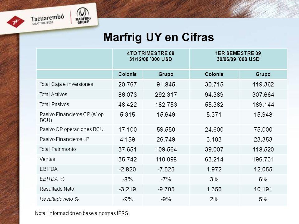 Marfrig UY en Cifras 4TO TRIMESTRE 08. 31/12/08 `000 USD. 1ER SEMESTRE 09. 30/06/09 ´000 USD. Colonia.