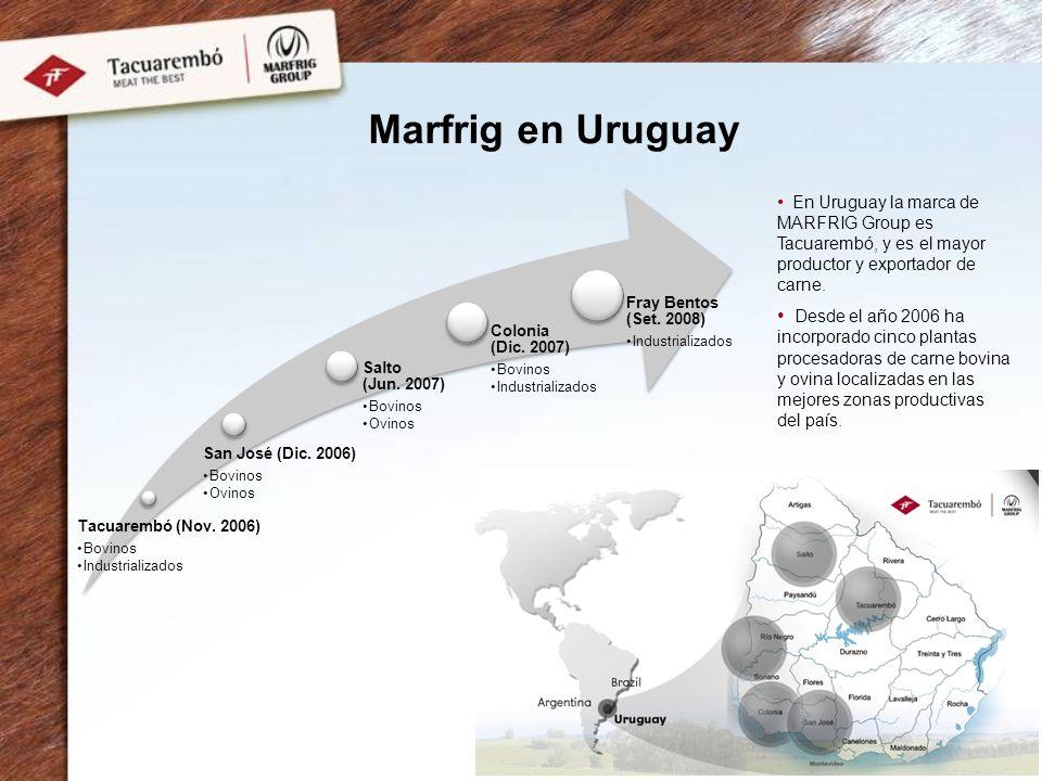 Marfrig en Uruguay Tacuarembó (Nov. 2006) Bovinos. Industrializados. San José (Dic. 2006) Ovinos.