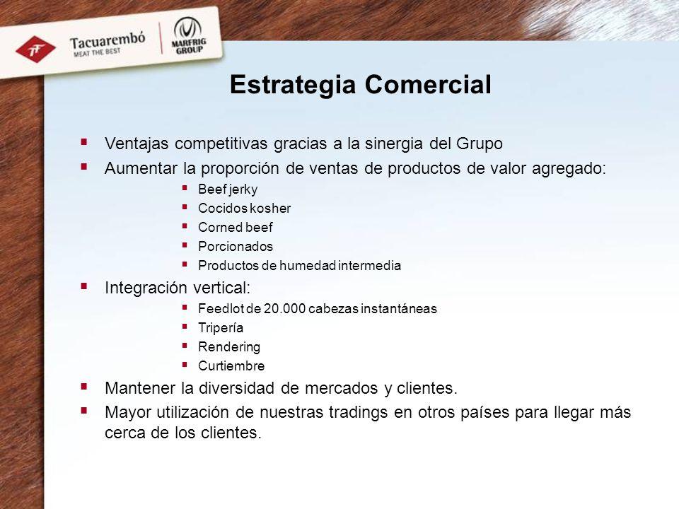 Estrategia Comercial Ventajas competitivas gracias a la sinergia del Grupo. Aumentar la proporción de ventas de productos de valor agregado:
