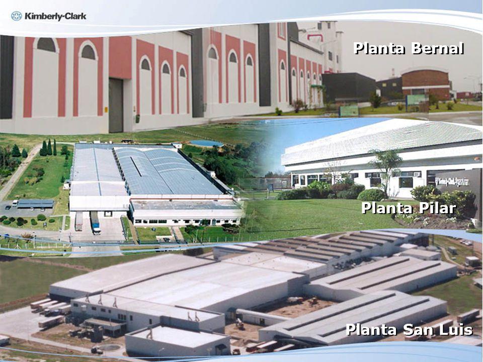 Planta Bernal Planta Pilar Planta San Luis