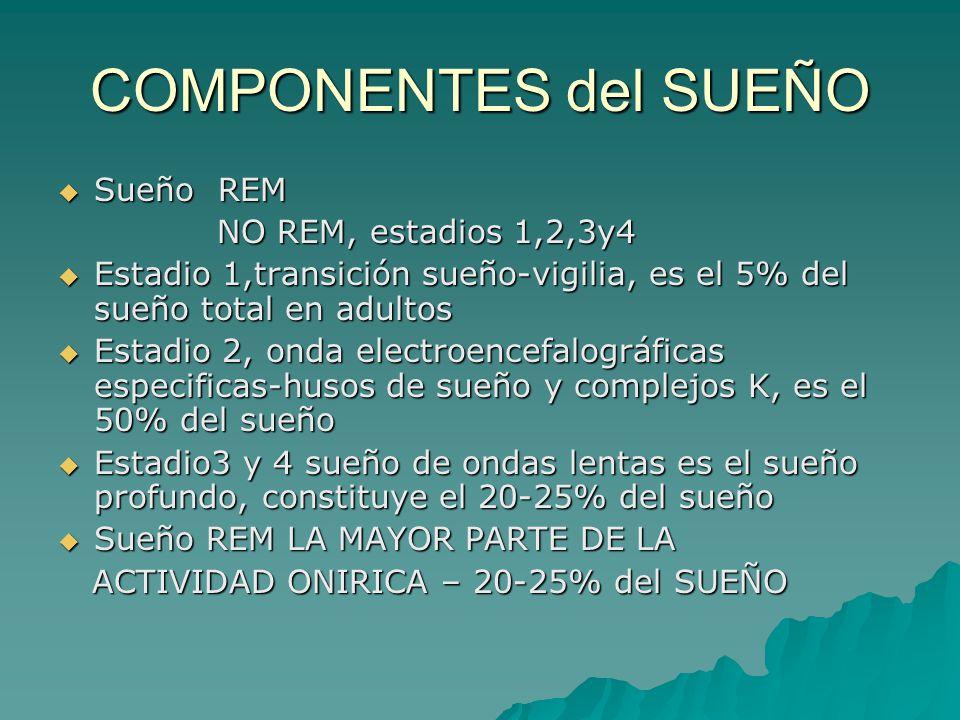 COMPONENTES del SUEÑO Sueño REM NO REM, estadios 1,2,3y4