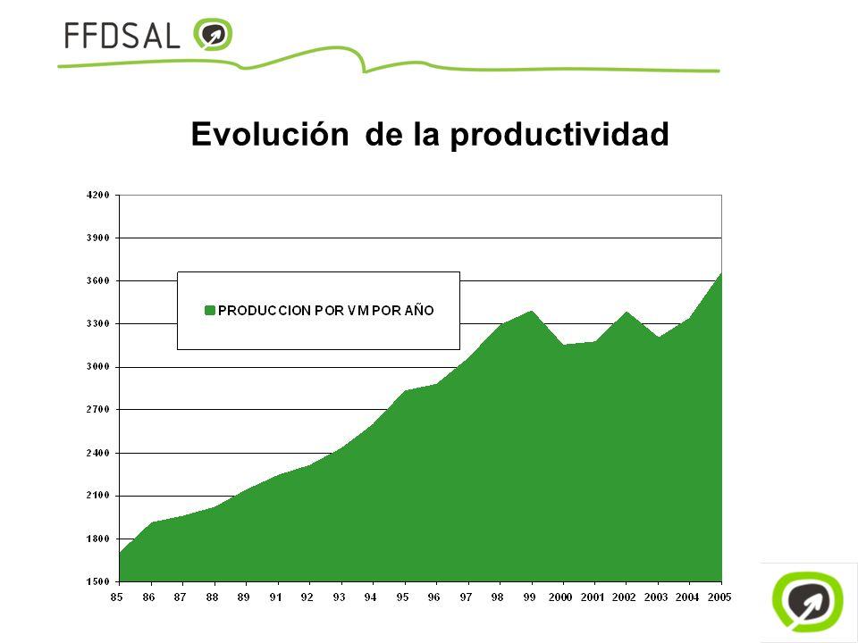 Evolución de la productividad