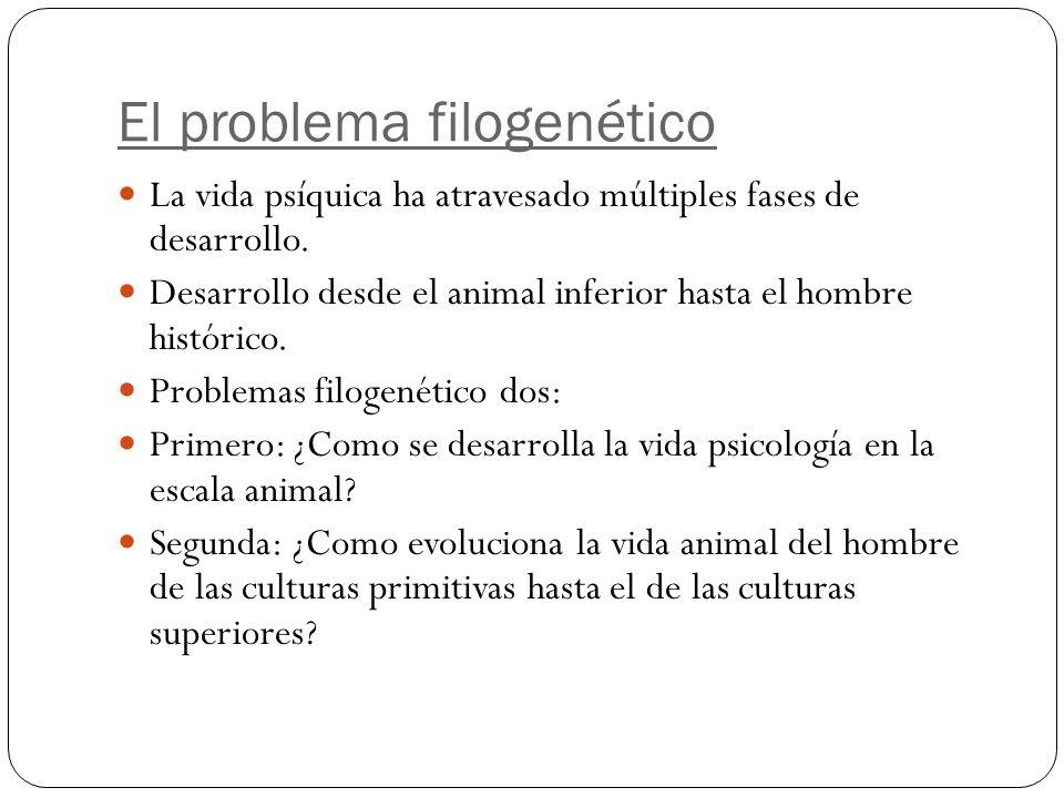 El problema filogenético