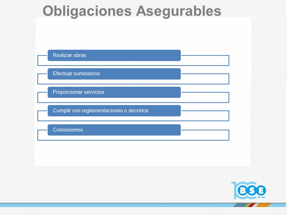 Obligaciones Asegurables