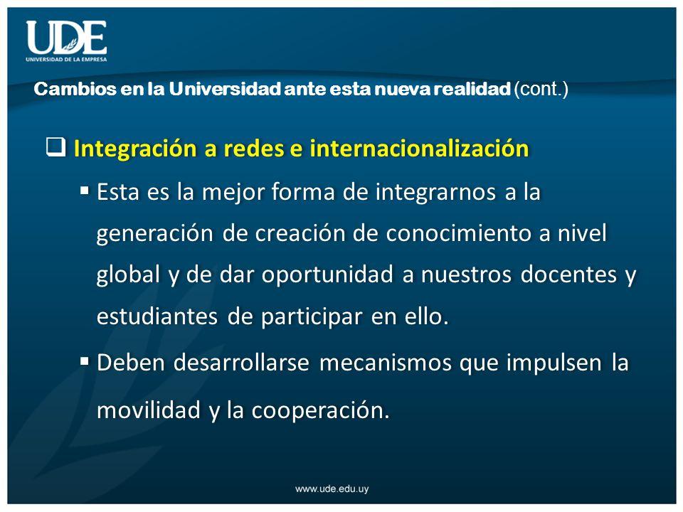 Integración a redes e internacionalización