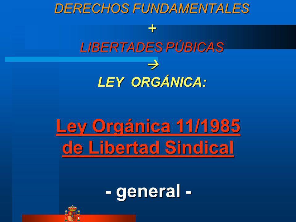 Ley Orgánica 11/1985 de Libertad Sindical